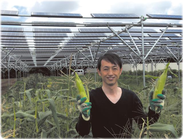 再生可能エネルギー画像